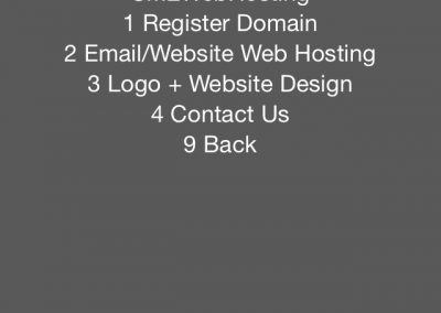 sme-web-hosting-menu-ussd-application-development-email-website-design-web-hosting-mobile-online-presence